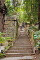 Dipsea Trail Stairs Mill Valley.jpg