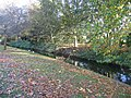 Ditch and autumn leaves - geograph.org.uk - 1078847.jpg