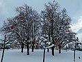 Dorfkrone - panoramio.jpg