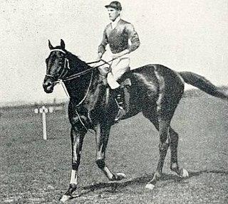 Doricles British-bred Thoroughbred racehorse
