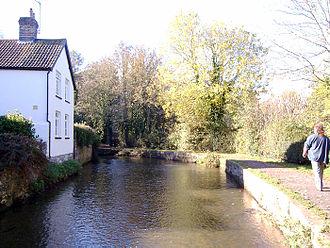 River Frome, Dorset - River Frome near Dorchester