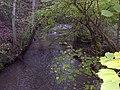 Dowles Brook - geograph.org.uk - 76936.jpg