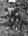 Duitse steenzetters werken op Afsluitdijk, Bestanddeelnr 905-6534.jpg