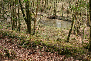 Duloe, Cornwall - The West Looe River