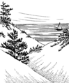 Dunes (PSF).png