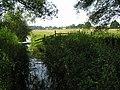 Dyke and farmland, near Horning - geograph.org.uk - 196312.jpg