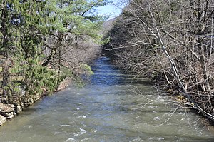 Sinnemahoning Creek - The creek's East Fork at Wharton