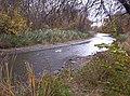 Ecorse River.jpg