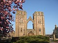 Elgin Cathedral - geograph.org.uk - 1116158.jpg