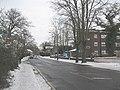 Elmstead Lane, Chislehurst - geograph.org.uk - 1655606.jpg