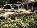 Empress Botanical Garden 2.jpg