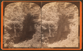 Entrance to cave, Skinner Hollow, Manchester, Vt, from Robert N. Dennis collection of stereoscopic views.png