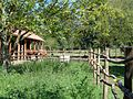 Ergela međimurskog konja, Žabnik (Croatia) - ograda.jpg