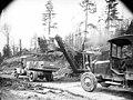 Erie steam shovel loading trucks on a plank road, Clemons Logging Company, near Melbourne, ca 1925 (KINSEY 2050).jpg