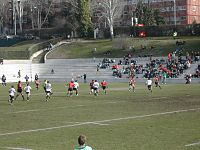 A phase of the match between the national rugby union teams of Spain and Portugal in Madrid
