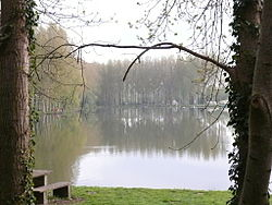 Etangs de Loeuilly.JPG