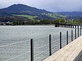 Etzel - Hurden - Obersee - Holzbrücke 2012-04-22 17-56-20 (P7000).JPG