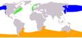 Eubalaena range map.png