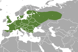 European Mole area.png