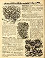 Everything for the garden (16231930174).jpg