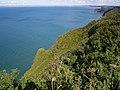 Exmansworthy Cliff - geograph.org.uk - 505684.jpg