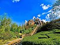 Expedition Everest (16616714283).jpg