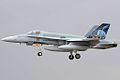 F18 - RIAT 2008 (2672501008).jpg