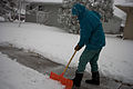 FEMA - 40421 - North Dakota resident shovels snow off his sidewalk.jpg