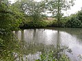 Farm Pond - geograph.org.uk - 236654.jpg