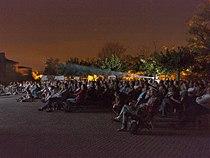 Festival de cinema de plein air de visan.jpg