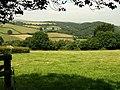 Field beside Ingsdon Lane - geograph.org.uk - 902037.jpg