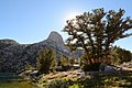 Fin Dome. Rae Lakes, Kings Canyon National Park, California.jpg