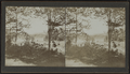 First glimpse at Lake George, N.Y., on Plant (?) Road, from Robert N. Dennis collection of stereoscopic views.png
