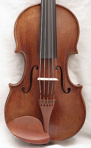 Five string violin - A five string violin bears strong structural resemblance to a traditional violin.