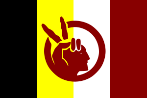 English: Flag of the American Indian Movement.