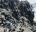 Flickr - brewbooks - Plant hunting near Welch Peak (8).jpg