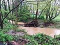 Flooding in McLean IMG 20140430 160713 (14053765476).jpg
