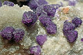 Fluorite, quartz 7100.FS2014.jpg