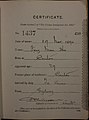 Fong Man Ho Auckland Chinese poll tax certificate butts Certificate issued at Auckland.jpg