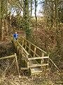 Footbridge over the incipient Leighton Brook - geograph.org.uk - 1756695.jpg
