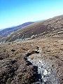 Footpath Going North To Meall an Uilt Chreagaich - geograph.org.uk - 422443.jpg
