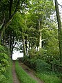 Footpath beside Wadstray House - geograph.org.uk - 192540.jpg