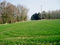 Footpath crossing arable land - geograph.org.uk - 1255438.jpg