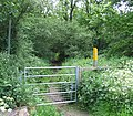 Footpath into the woods - geograph.org.uk - 186766.jpg