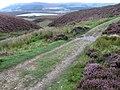 Footpath on Barden Moor at Hutchen Gill - geograph.org.uk - 1490923.jpg