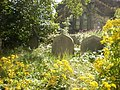 Former St Georges Church, Sowerby Bridge, Graveyard - geograph.org.uk - 1431298.jpg