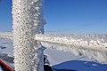 Frosting (4370262379).jpg