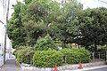 Fukadaike Park 20190817-08.jpg