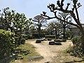 Fukuzawa Park 20170430.jpg