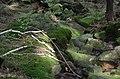 Góry Strużnickie - panoramio (4).jpg